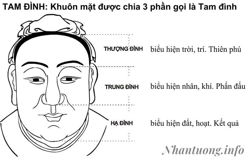 Phân chia khuôn mặt theo Tam Đình