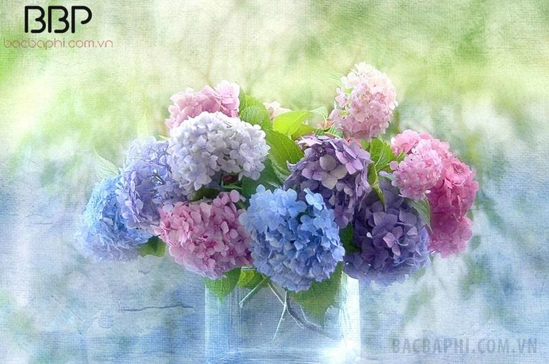 Bình hoa Cẩm Tú Cầu đẹp mắt
