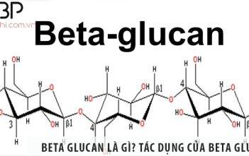 Beta glucan là gì? Tác dụng của chất beta glucan là gì?
