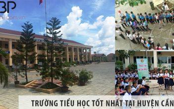 Top 4 trường tiểu học cấp 1 tốt nhất tại huyện Cần Giờ